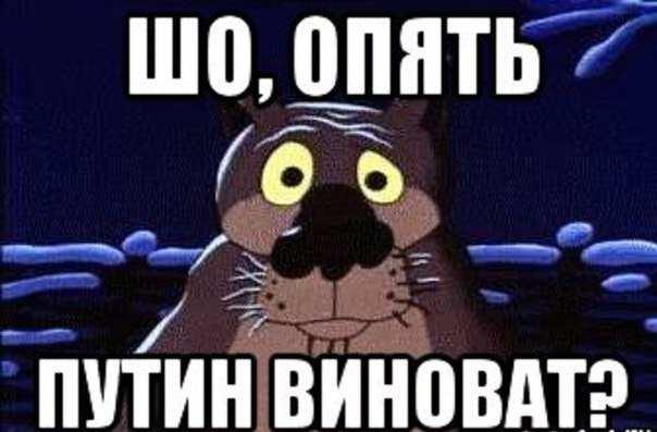 Россия виновата во всём: Украинцы воевали за чеченских боевиков, а Москва выплачивала долги Западу за весь СССР | Русская весна