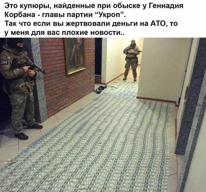 За что воюет украинский солдат? (ВИДЕОГРАФИКА) | Русская весна