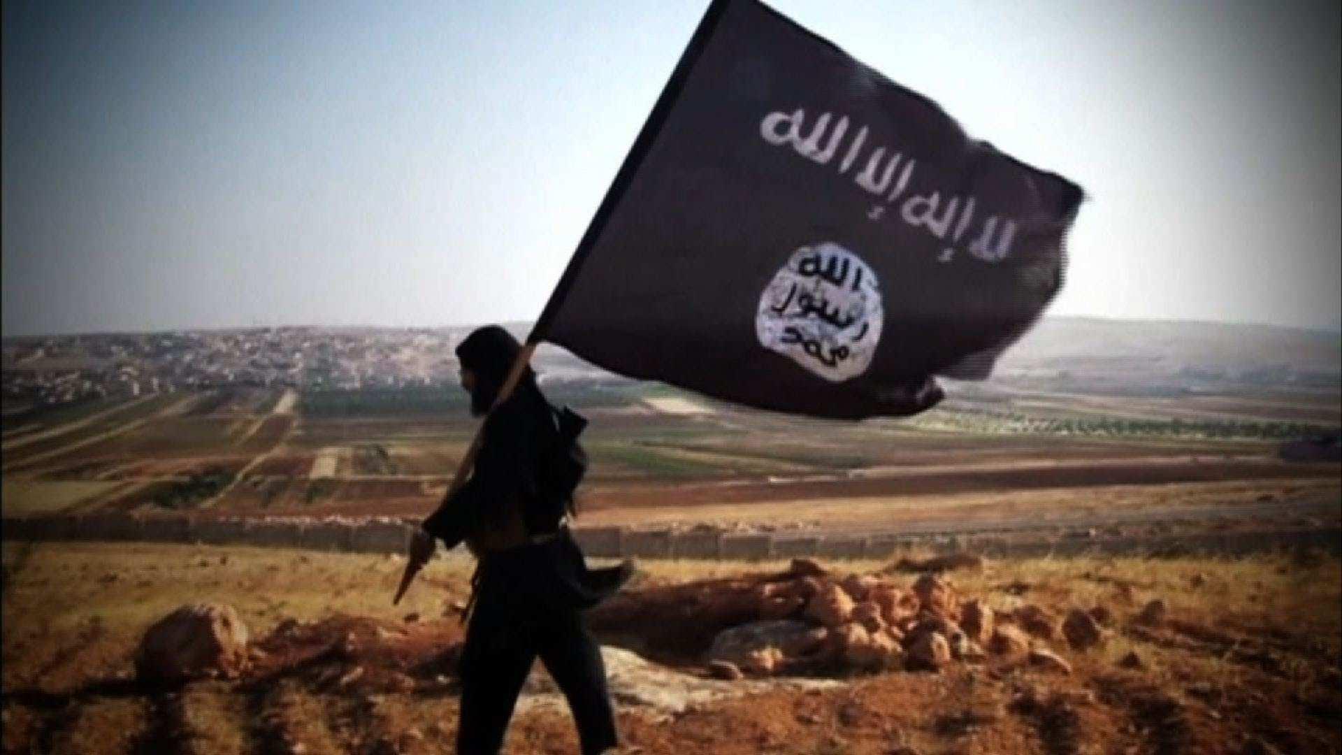 ВАЖНО: боевики сирийской «умеренной оппозиции» подняли знамена «джихада» иприсягнули наверность «Фронту ан-Нусра» | Русская весна