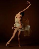 Классический балет Passe
