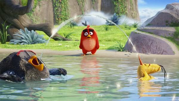 angry birds v kino o tom chto stanovitsya normoy v detskih multfilmah 31 «Angry Birds в кино»: О  том, что становится нормой в детских мультфильмах