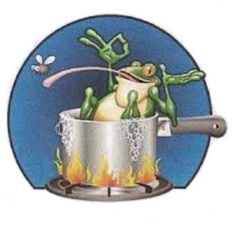 Технологии утилизации: Хайтек, или лягушка в собственном соку