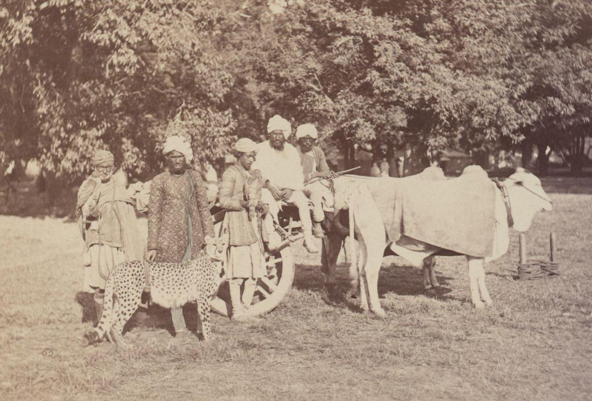 Albom fotografii indiiskoi arhitektury vzgliadov liudei 33 1