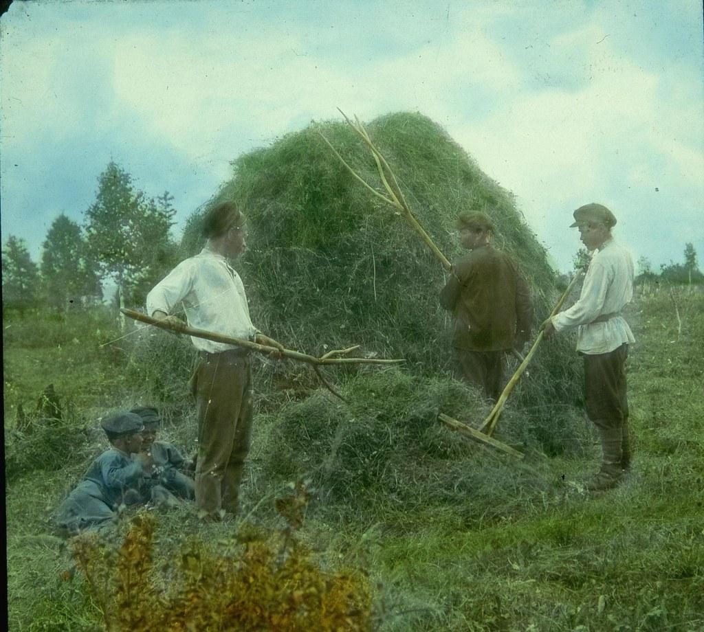 Крестьяне собирают сено в скирду