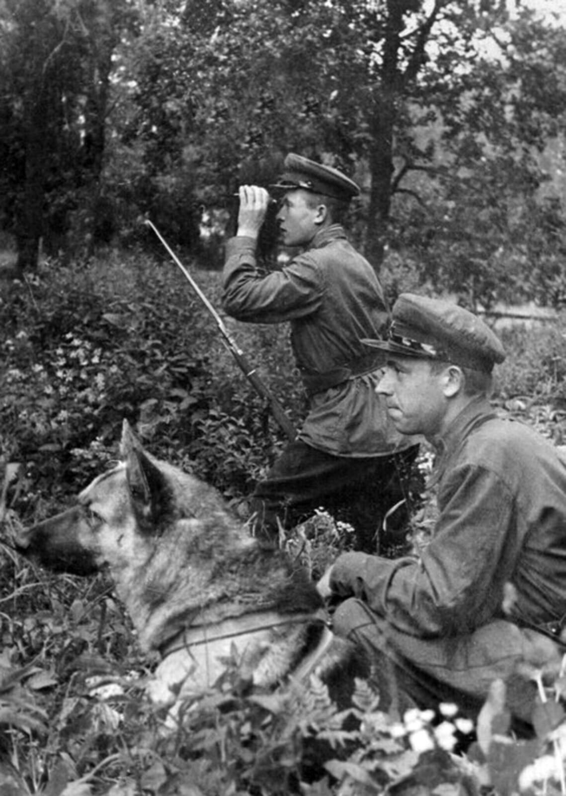 1938. Пограничный наряд со служебной собакой