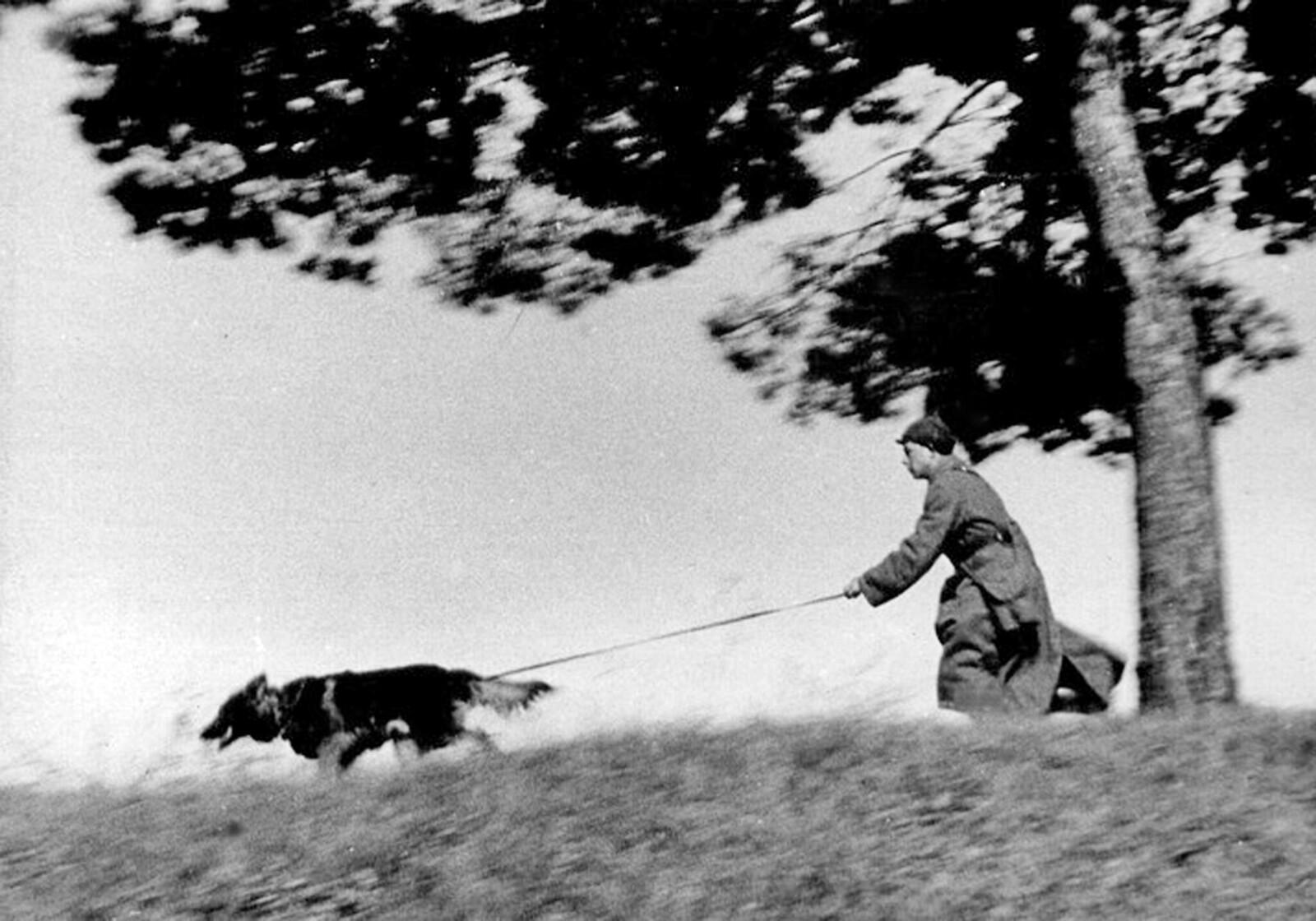 1939.. «Проводник-пограничник с собакой идёт по следу нарушителя новой границы»