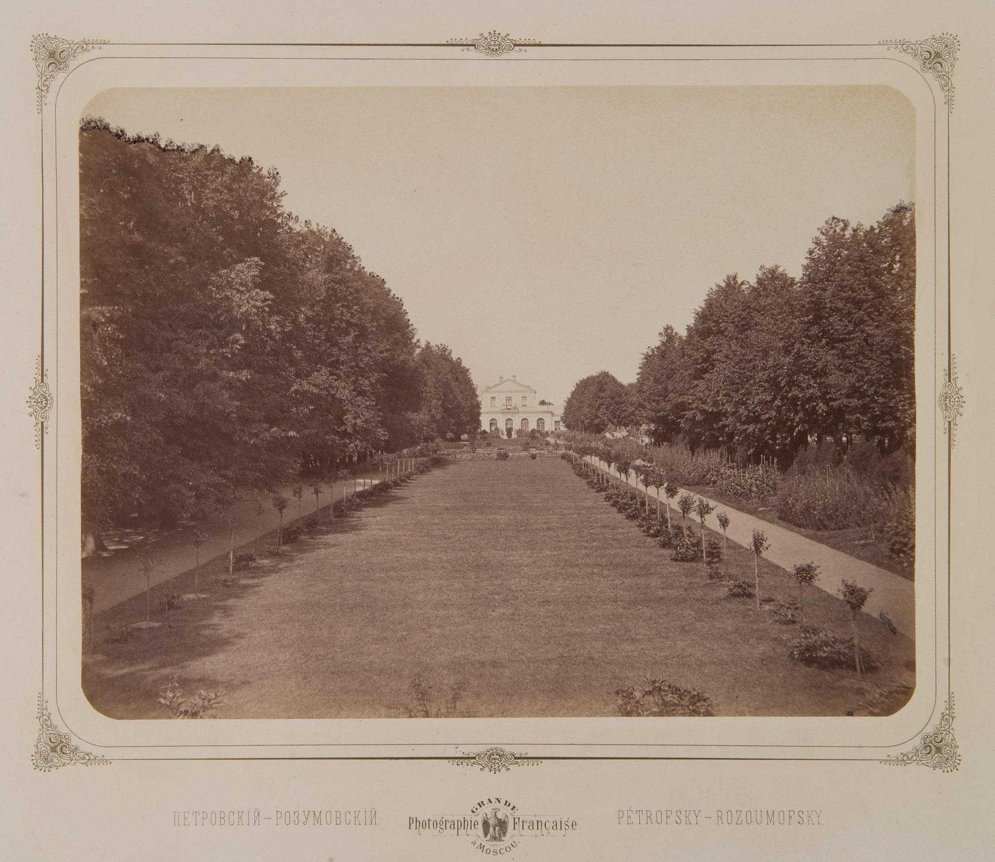 1870-е. Петровско-Разумовское, парковая аллея. ведущая к оранжире