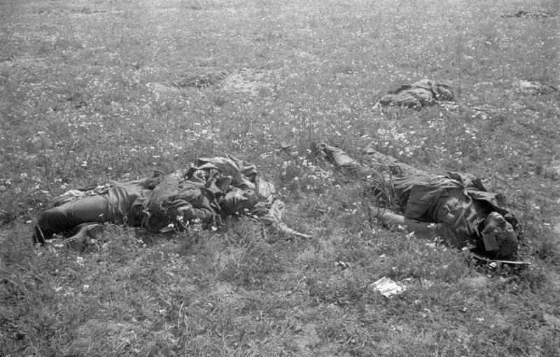 Тела убитых немецких солдат в поле на Украине, 1943 год.