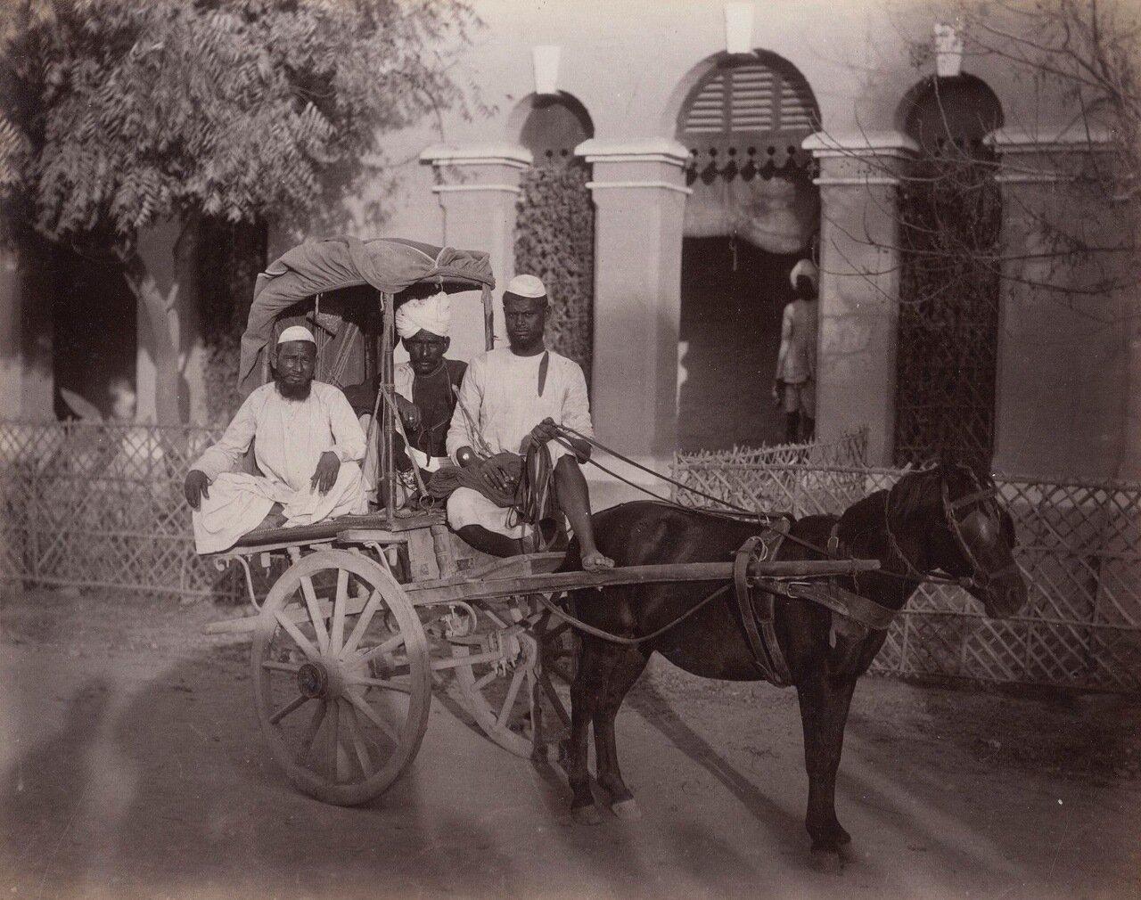 Местная повозка. 1880