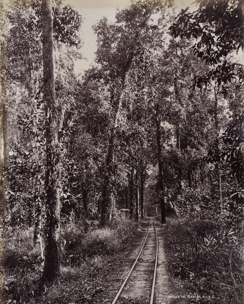 Дарджилинг-Гималайская железная дорога. 1880