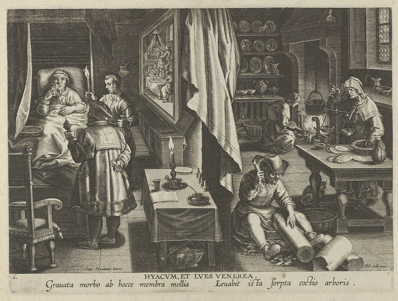1280px-New_Inventions_of_Modern_Times_-Nova_Reperta-,_The_Discovery_of_Guaicum_as_a_Cure_for_Veneral_Infection,_plate_6_MET_DP841125.jpg