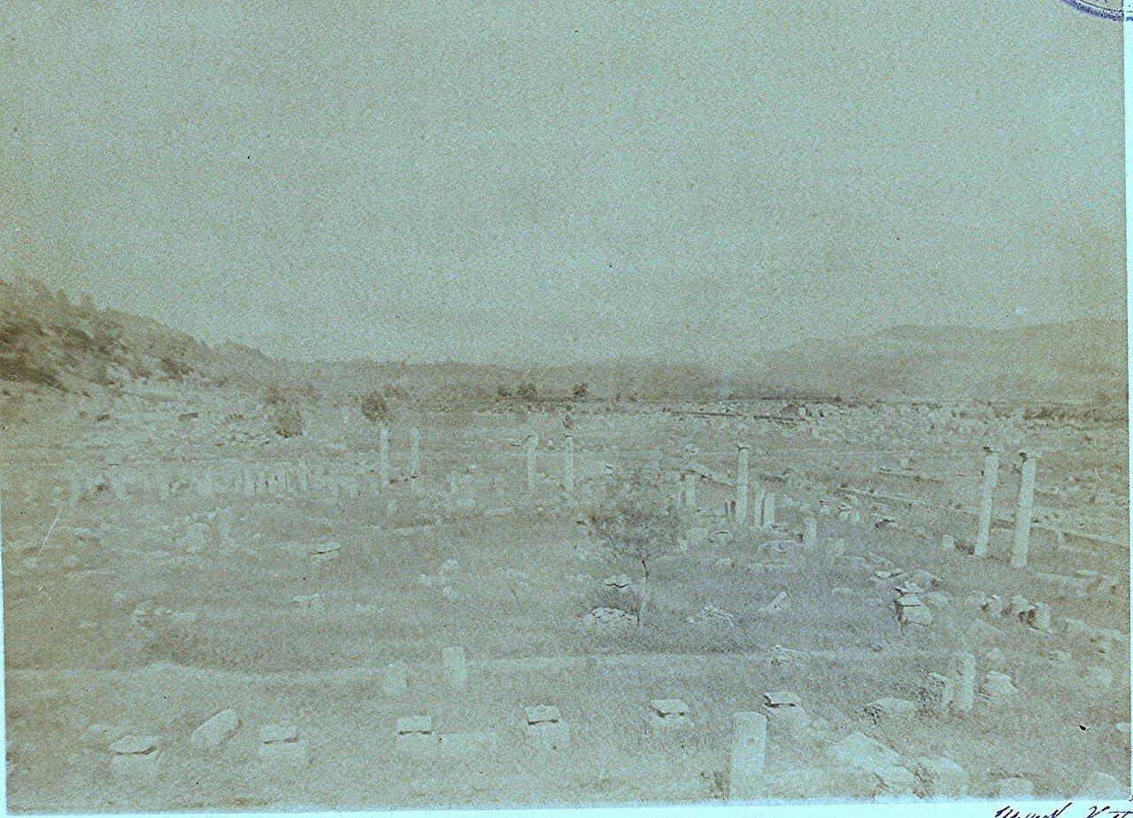 Общий вид. 1892