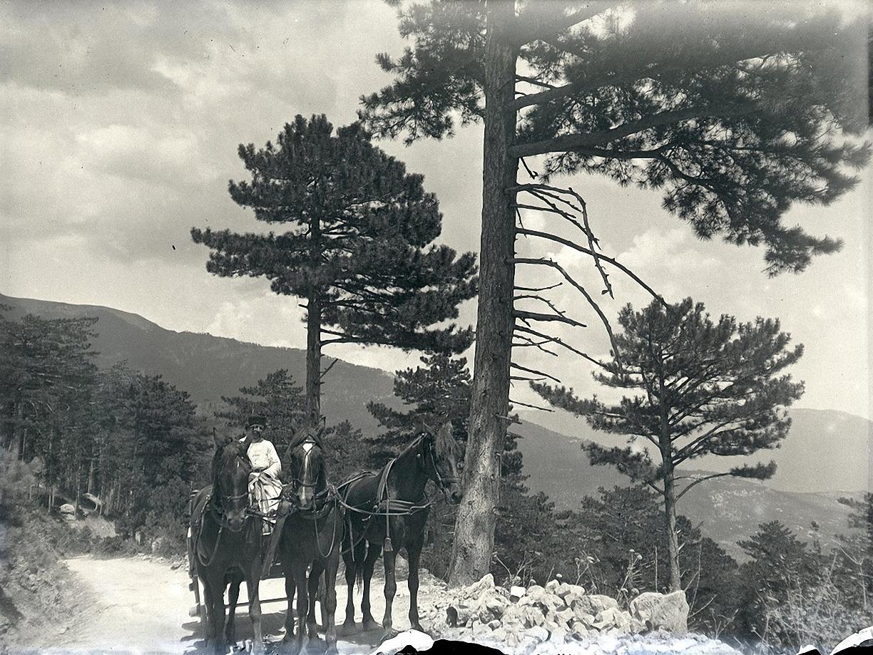1897. Гурзуф. По дороге к водопаду Учан-Су