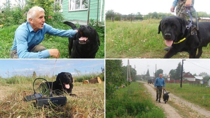 Собака-поводырь уже более 7 лет является его глазами при передвижении и лучшим другом (д. Зарытки, Рязанская обл.).   Фото: fishki.net.