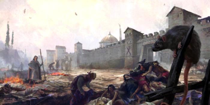 Возможно, именно из Орды в Европу пришла чума. /Фото: evpatori.ru