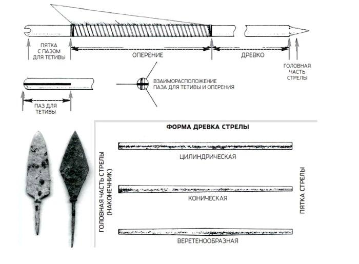 Обобщенная схема для конечного вида древка. /Фото: popmech.ru