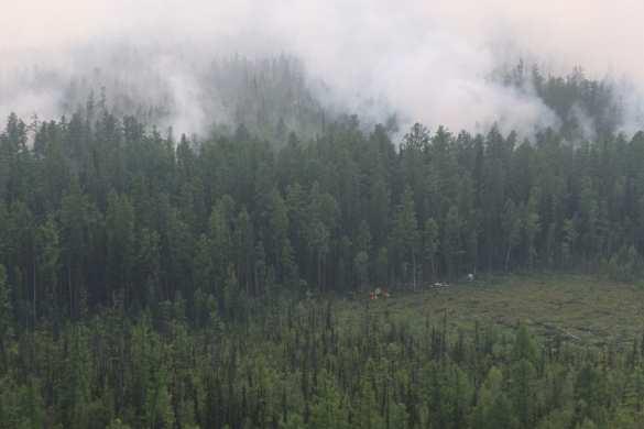 Сибирь: горит 3 млн гектаров леса, дым дошёл до Монголии (ФОТО, ВИДЕО) | Русская весна