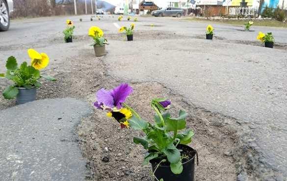 К приезду Порошенко на Закарпатье в дорожные ямы «посадили» цветы (ФОТО) | Русская весна