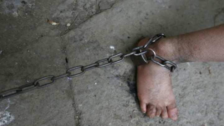 Нечеловеческие условия и побои: Под Одессой бандиты держали в рабстве около ста человек (ФОТО, ВИДЕО) | Русская весна
