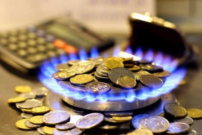 МВФвынуждает Украину покупать газв2раза выше реальной стоимости, — нардеп | Русская весна