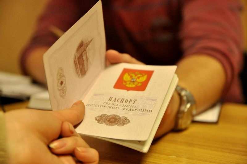 МВД ЛНР опубликовало требования к фото на паспорт гражданина РФ (ВИДЕО) | Русская весна