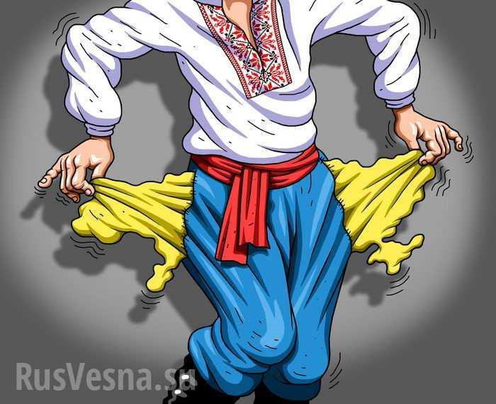 Работа забесплатно: украинский врач показала платёжную ведомость (ФОТО) | Русская весна