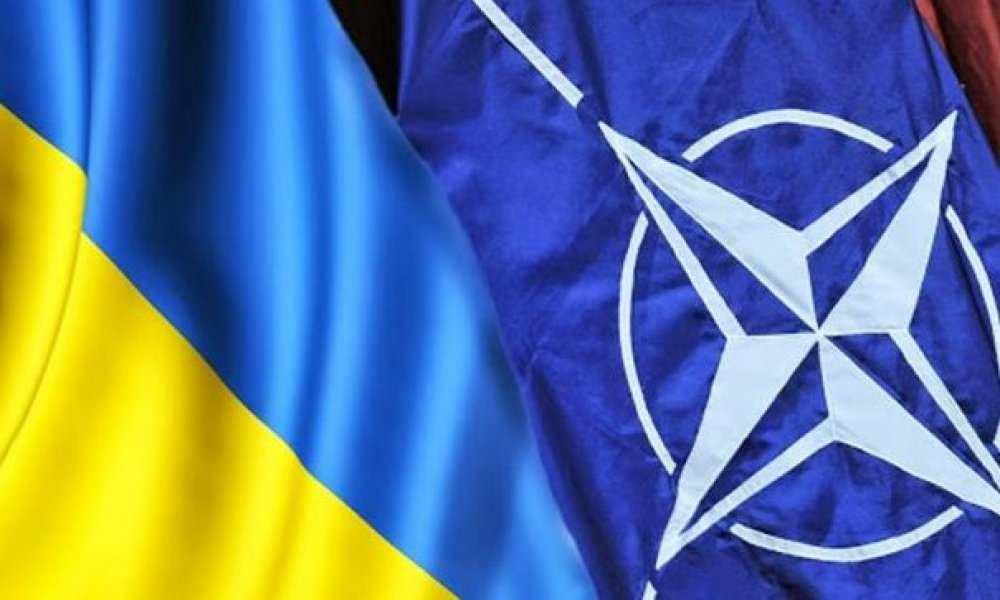 «Это не сигнал о членстве»: В НАТО «обломали» очередную «перемогу» Украины | Русская весна