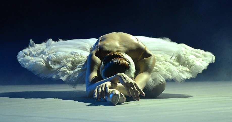 Умирающий лебедь или панночка в гробу? В Сети смеются над женой Порошенко (ФОТО) | Русская весна