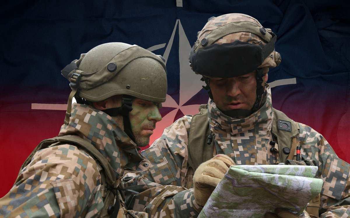 «Пусть идальше тренируют мясо»: Чему инструкторы НАТО могут научить ВСУ | Русская весна
