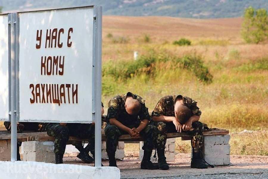 Донбасс: сожжён блиндаж ВСУ с карателями,командиру разведки проломили череп (ВИДЕО)   Русская весна