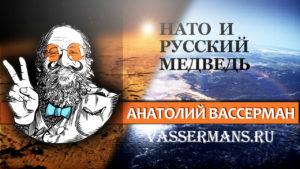 НАТО и русский медведь
