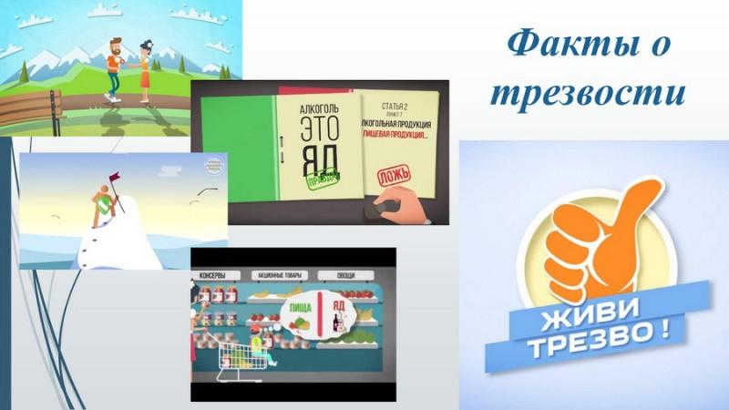 obzor sotsialno znachimyih proektov 32 800x450 custom Обзор социально значимых проектов в сфере профилактики употребления психоактвиных веществ