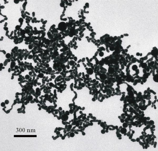 <b>Рис. 4.</b> Микрофотография наночастиц золота, полученных при облучении лазером золотой мишени в водном растворе соли цезия-137 (эксперимент 2011года)