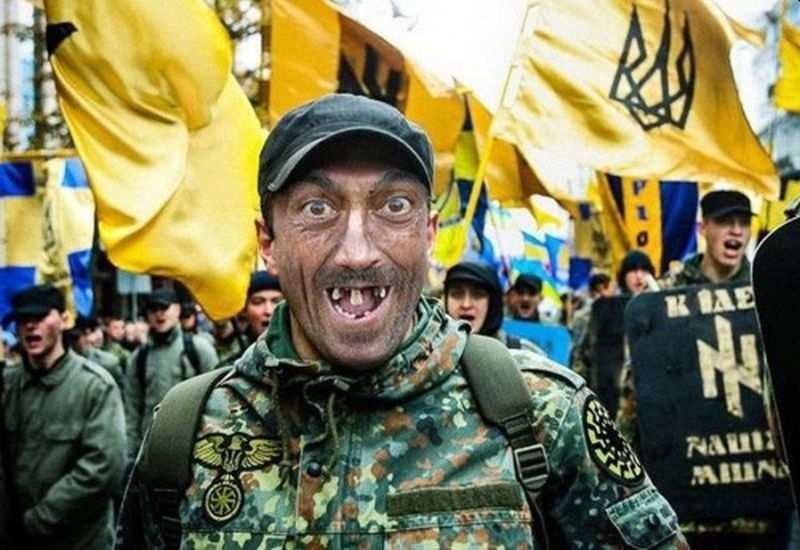 Украина меняется: скулящих нацистов силой выбивают с улиц и они начинают подлую войну | Русская весна