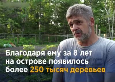 Житель Сахалина за свои деньги посадил 250 тысяч деревьев! Но местные власти отобрали его участок, где он выращивал саженцы.